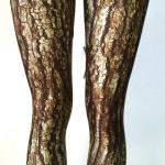 tree-leggings